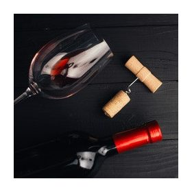 Accesorii vin si bere